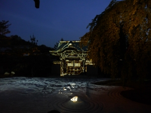 Todaiji temple illuminations