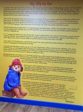 Introduction to Paddington on a wall in Paddington shop