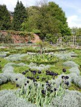 Shakespeare's New Place garden