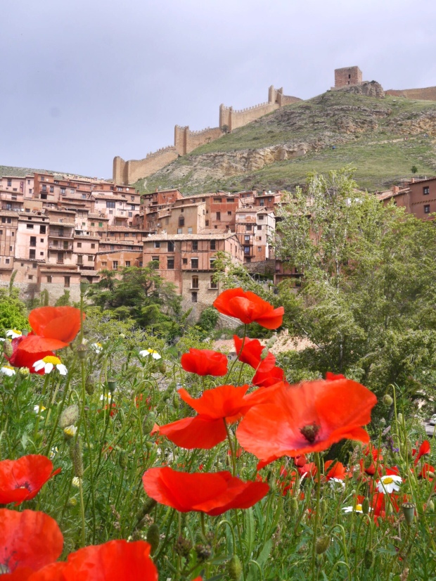 View of Albarracín, its murralla and wildflowers